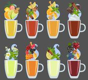 Set of black, green and herbal tea with additives. Vector. Vector color image of a cup with tea and various additives from fruits and berries, spices and herbs Royalty Free Stock Photos