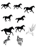Set of black horse Stock Images