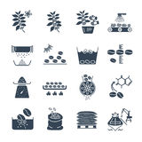 Set of black icons coffee production processing Stock Photos