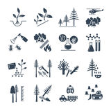 Set of black icons forestry and silviculture production. Process Royalty Free Stock Images