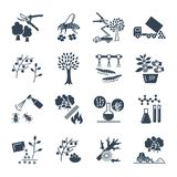 Set of black icons gardening, farm. Production process Royalty Free Stock Photos