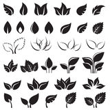 Set of black leaves design elements isolated Stock Photo