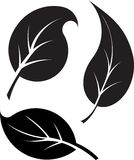 Set of 3 black leaves vector silhouettes.  Stock Photo