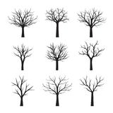 Set Black naked Trees without Leaves. Vector Illustration Stock Photos