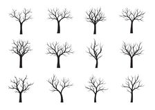 Set of black naked Trees. Vector Illustration. Set of black naked Trees. Vector graphic. Pland and garden Stock Photo