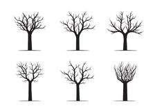 Set black naked Trees. Vector Illustration. Set of black naked Trees. Vector Illustration and graphic elements. Nature and garden Stock Images