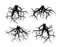 Set of Black Roots. Vector Illustration. Royalty Free Stock Images