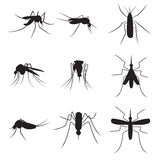 Set of black silhouette carrier mosquitoes isolated on white bac Royalty Free Stock Images