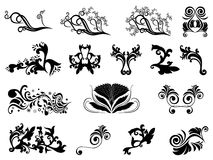 Set of black silhouettes of floral elements over w Stock Images