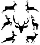 Set of black silhouettes of reindeers in different moving positi. Ons isolated on white background. Vector illustration, icons, clip art, elements for design Royalty Free Stock Image