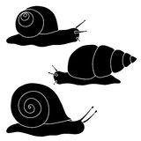 Set of black snails. Drawing hand. Royalty Free Stock Photos