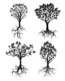 Set of Black Tree and Roots. Royalty Free Stock Photography