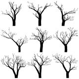Set black trees Royalty Free Stock Photography