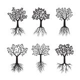 Set of black Trees with Leaves and Roots. Vector Illustration stock illustration