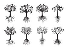 Set black Trees with Leaves and Roots. Vector Illustration vector illustration