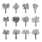 Set Black Trees with Leaves. Vector Illustration. Set of Black Trees with Leaves. Vector Illustration and floral pattern Stock Image