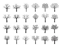 Set Black Trees with Leaves. Vector Illustration. Plant and garden. Set of Black Trees with Leaves. Vector Illustration Stock Images