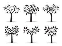 Set of black Trees with Leaves. Vector Illustration. Plants and garden Stock Photos