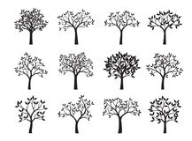 Set of black Trees with Leaves. Vector Illustration. Plants and garden Stock Images