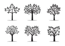 Set black Trees with Leaves. Vector Illustration. Set of black Trees with Leaves. Vector Illustration Stock Photo