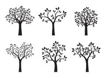 Set of black Trees with Leaves. Vector Illustration. Plant in garden Stock Image