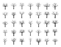 Set Black Trees with Leaves. Vector Illustration. Set of Black Trees with Leaves. Vector Illustration. Shape of black Tree. Floral element Stock Images