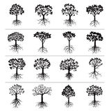 Set of Black Trees and Roots Stock Image