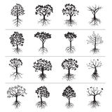 Set of Black Trees and Roots Royalty Free Stock Photos