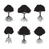 Set of Black Trees with Roots. Vector Illustration. Set Black Trees with Roots. Vector Illustration Royalty Free Stock Photo