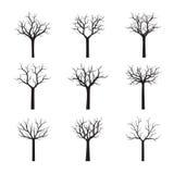 Set of black Trees. Vector Illustration. Set of black naked Trees. Vector Illustration Stock Photo