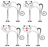 Set of black and white cats Stock Images