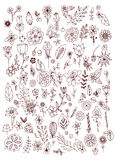 Set of black white doodle flowers leaves. Hand drawn  design elements. Brown & white. Vintage. Stock Images