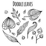 Set of black and white doodle leaves. With zentangle pattern. Vector element for your design Royalty Free Stock Photos