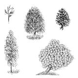 Set of black and white drawings of trees in the art dotwork Stock Photos