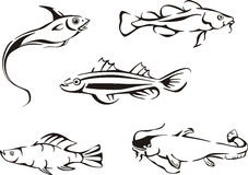 Set of black and white fish Royalty Free Stock Photo