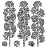 Set of black and white images of larch branches and cones. Isolated vector objects. Royalty Free Stock Images