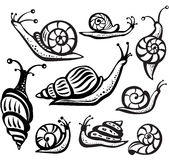 Set of black and white snails Stock Photos