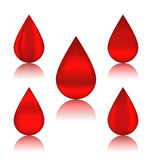 Set blood drops with reflections Stock Images