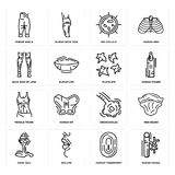 Set of Blood Vessel, Human Fingerprint, Cone Cell, Bronchioles, Female Trunk, Platelets, Back Side Of Legs, Big Cellule, Ankle ico. Set Of 16 simple  icons such Royalty Free Stock Photos