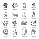 Set of Blood Vessel, Large Intestine, Human Skull, Cellulite, Hip, Nose Side View, Woman Pregnant, Head, Hand Bones icons. Set Of 16 simple  icons such as Blood Royalty Free Stock Photography