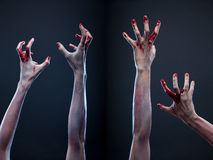 Set of bloody zombie hands. Creepy set of bloody zombie hands, studio shot over gray background Royalty Free Stock Photo
