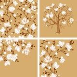 Set. Blooming magnolia. Stock Photo