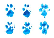 Set of blue dog`s footprint watercolor on white background royalty free stock image