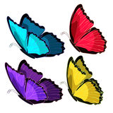 Set blue morpho the butterfly monarch color  vector illustration Royalty Free Stock Photos