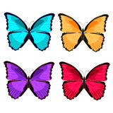 Set blue morpho the butterfly monarch  vector illustration Stock Image