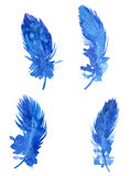 Set of blue plumes Stock Photo