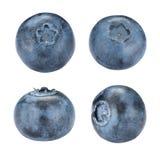 Set of Blueberries Royalty Free Stock Image
