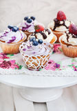 Set of  blueberry and strawberry cupcakes Royalty Free Stock Image