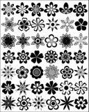Set Blumen lizenzfreie abbildung