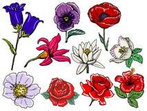 Set Blumen Stockfoto